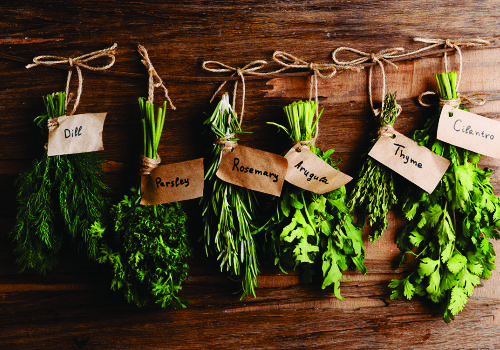 Recipe of the Week:  How to dry your own herbs