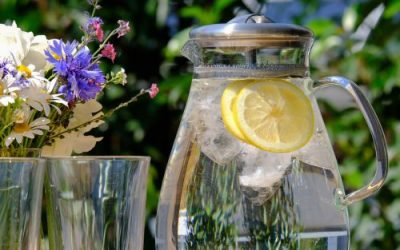 Importance of Water in your diet