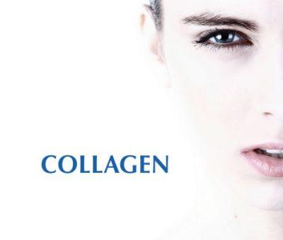 TLC-Collagen